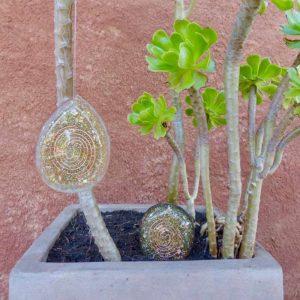 Orgonite croissance plante